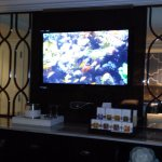 TV was tuned to an aquarium with music upon arrival