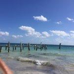 Ocean Coral & Turquesa Foto