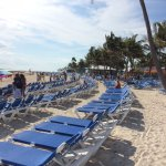 Clean beaches and abundant lounge chairs on Coco Cay.