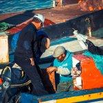 Les pécheurs de Rabat