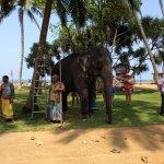 alle paar Tage wird Elefantenreiten angeboten