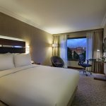 Double Hilton Guestroom