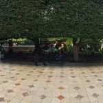 Foto de Jardin de la Union