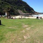 Lawn area overlooking beach
