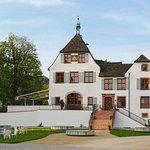 Schloss Binningen