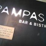 Photo of Pampas
