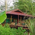 Photo of Iguana Lodge
