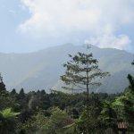 Xitou Nature Area