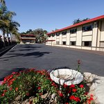 Photo of Red Roof Inn & Suites Monterey