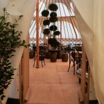 The Yurt at Nicholsons