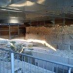Photo of Site Archeologique de Glanum