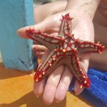 Zdjęcie Clubviaggi Resort Twiga Beach & SPA