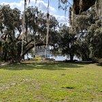 Backyard / Lake