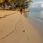 taking a beach walk