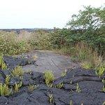 Lava Hike - a Kapuka