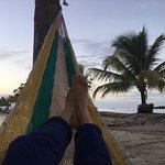 Photo de Amatique Bay Resort & Marina