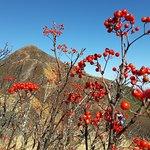 Mt Iawaki