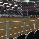Great seats looking towards the bucking chutes
