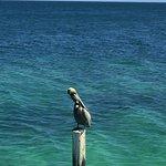 Foto di Excellence Riviera Cancun