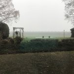 The view out of the back windows (very foggy day!).