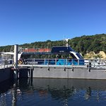 Photo of Doubtful Sound Cruise -Day Tours