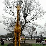 Photo of Leo Foo Village Theme Park