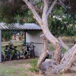 free hire bikes