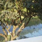 ウエストウッド リバーサイド ガーデン リゾート Image