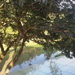 Photo de Westwood Riverside Garden Resorts