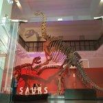 Foto de Australian Museum