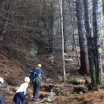Photo of Ziptrek Ecotours