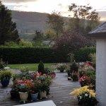 nice garden setting