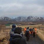 Horseback ride at Laxnes Farm
