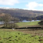 Rydal Water Photo