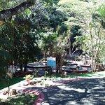 Photo de Hotel Borinquen Mountain Resort