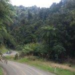 Forgotten World Highway Foto