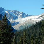 Jackson Glacier from a roadside pull out