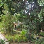 Foto de Pure Garden Resort