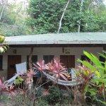 Photo of Star Mountain Jungle Lodge