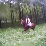 Riding through the wildflower fields in the park surrounding Versailles