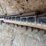 monkey plank walkway