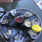 """Absolutely wonderful mahi mahi, crab stuffed grouper, Virginia oysters, and """"Vow of silence"""" coc"""