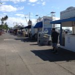 Whale Watch tour vendors lined up awaiting your business at the Front Street harbor.