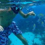 snorkel en playa las gatas...ecotours-ixtapa.com