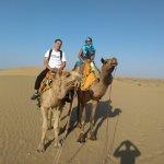 Sun moon camel safari