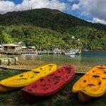 Foto Punga Cove Resort