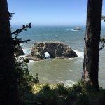 Photo de Samuel H Boardman State Park