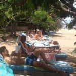 Nice beach loungers