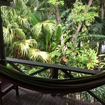 View from our room, loved the hammock