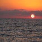 Foto de Flora del Mar